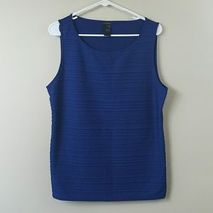 Ann Taylor Factory Blue Layered Stripe Tank Top